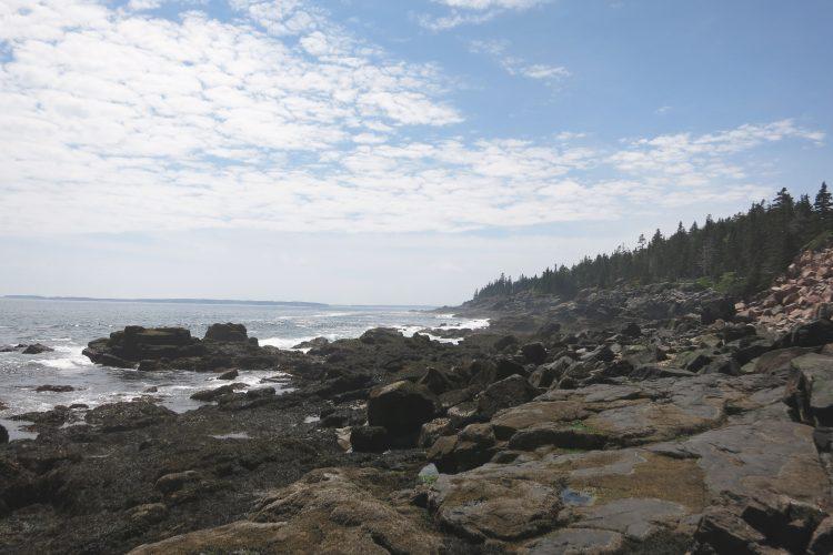 Acadia Modern Conservationist