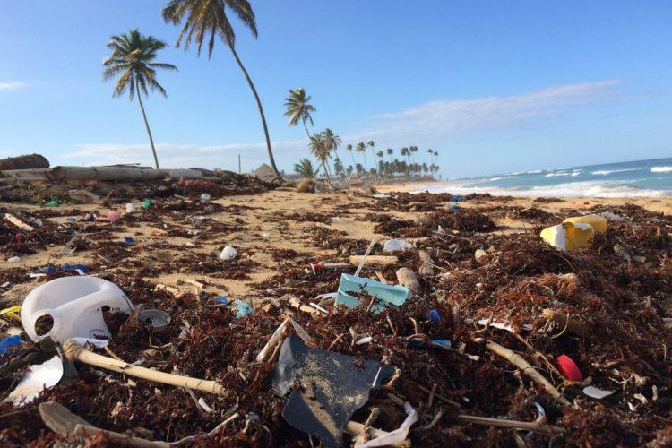 plastic waste_Modern Conservationist
