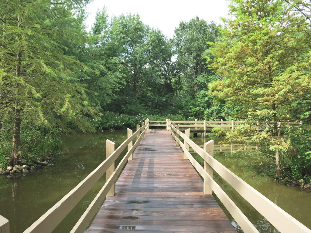 A wooden dock walkway across the water.