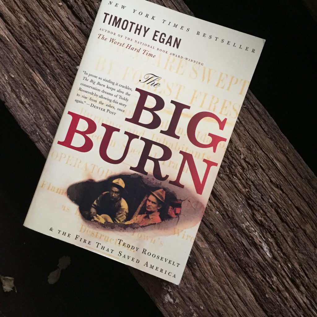A book titiled The Big Burn