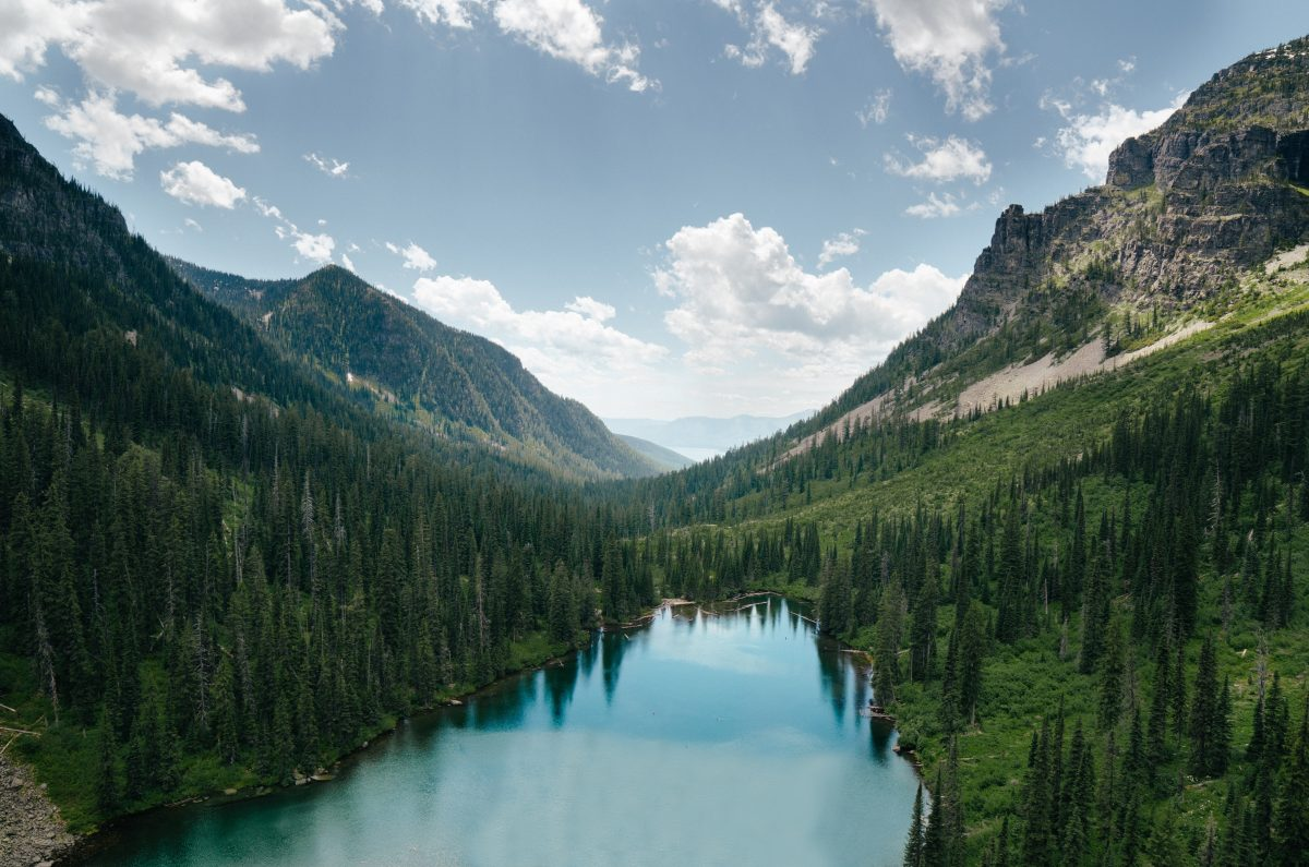 A long valley filled with evergreens and a large lake.