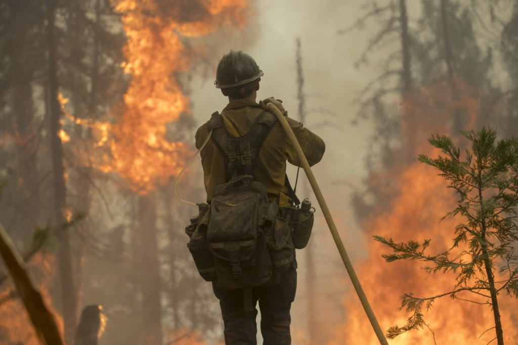 Firefighter carries hose towards a flaming forest.