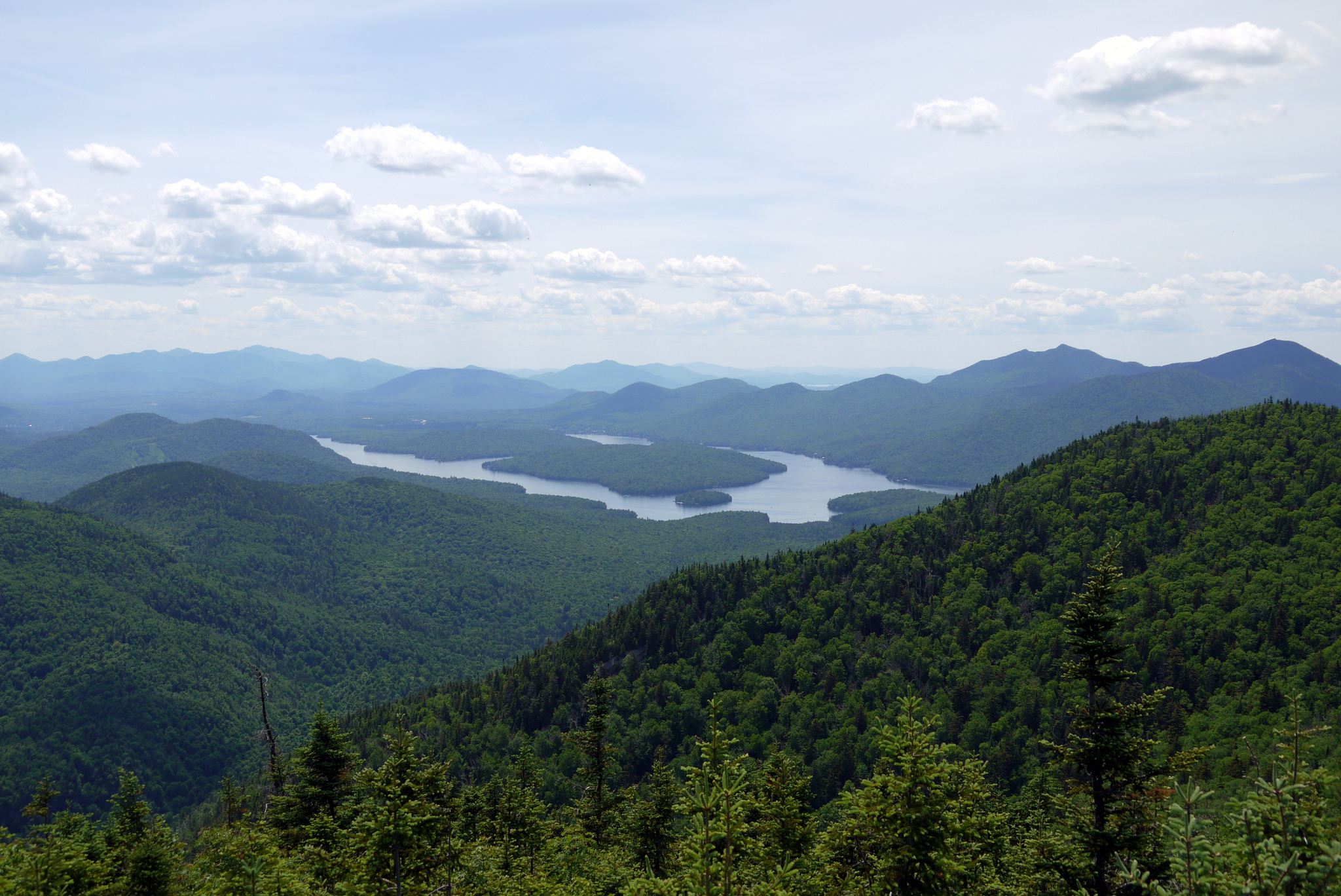 View of the green Adirondacks, with a lake in the distance.