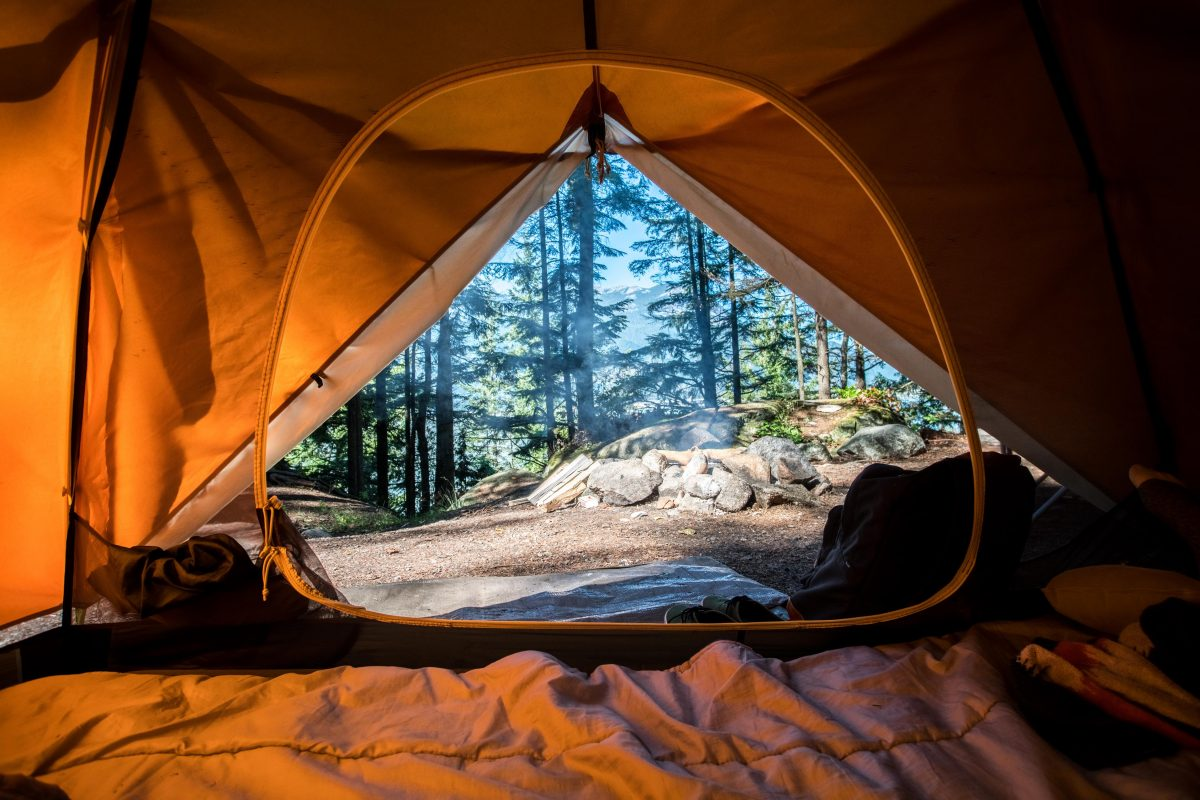 View from the inside of a tent looking in a forest