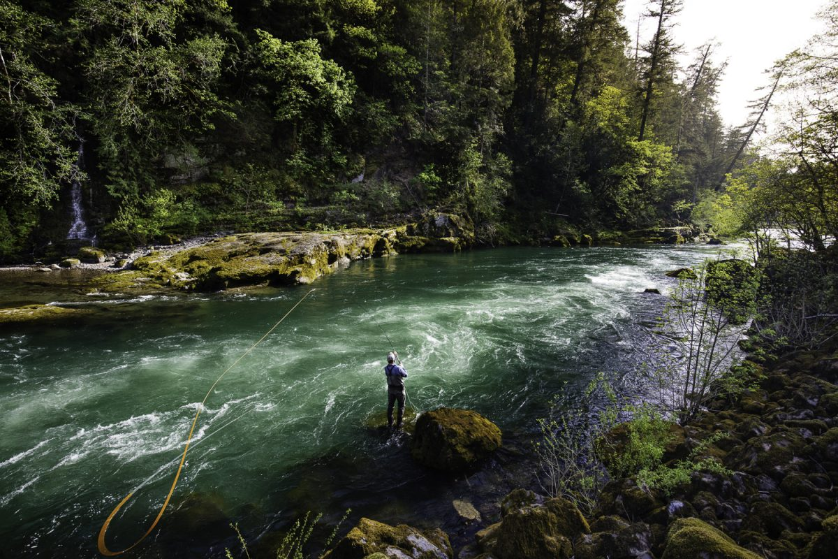 A man fly fishes on the North Umpqua River in Oregon