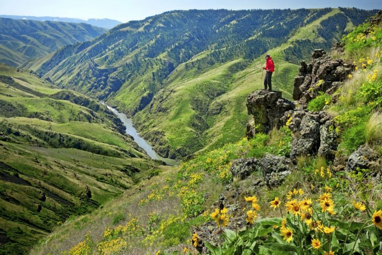 A hiker stands on a cliff overlooking the Salmon River in Idaho