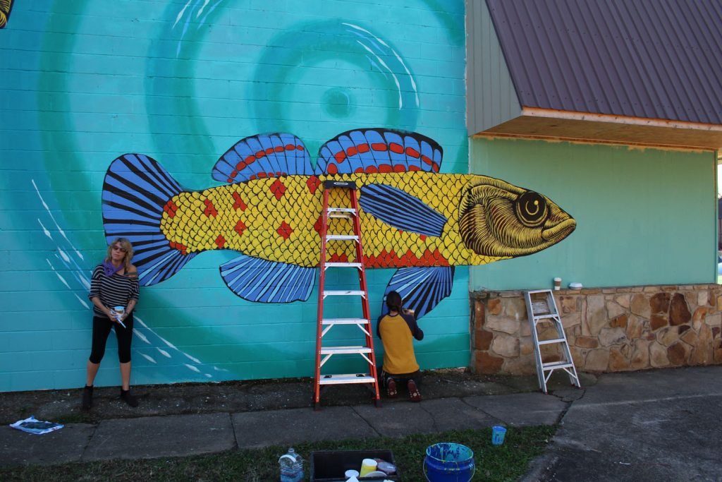 A mural of a watercress darter fish
