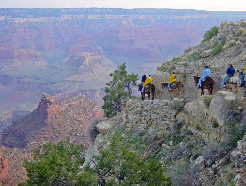 People ride horseback on a trail along the south rim of the Grand Canyon