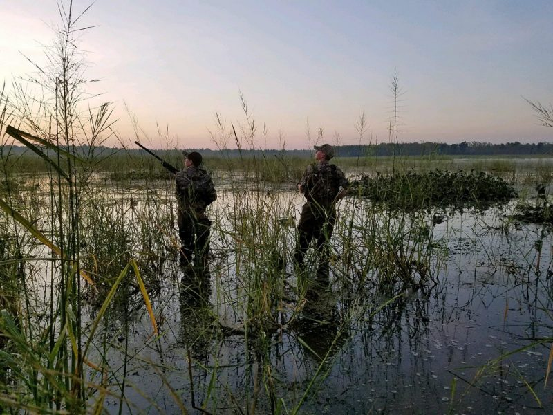 Two boys hunt at Perch River Wildlife Management Area in New York